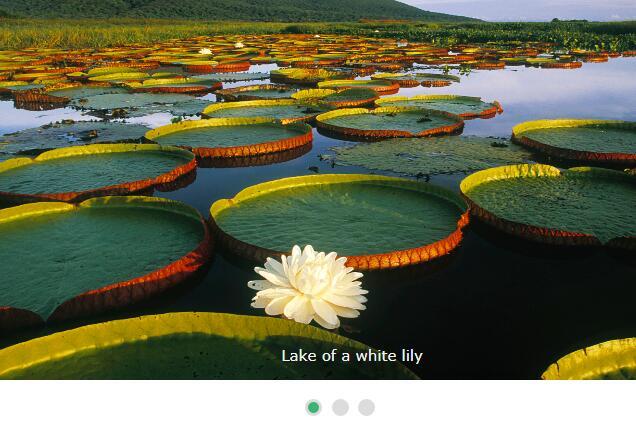 网页图片渐变切换焦点图幻灯片插件代码